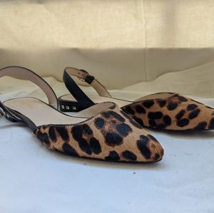 Nine West Leopard Haircalf Pointed Toe Flats
